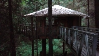 Treehouse at Islandwood