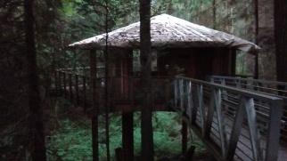 Treehouse at Islandwood