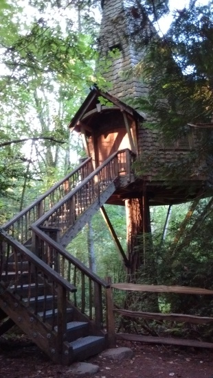 Another treehouse!